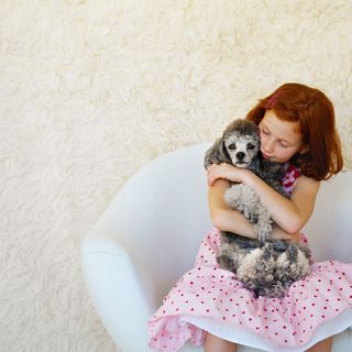 Polka dots and poodle