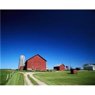 X. farm