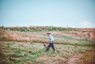 Man-walking-on-farm-1733192